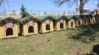 MILLI PARKLAR GENEL MÜDÜRLÜĞÜ - Köpek evleri sahiplerini buldu