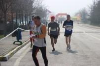 Türkiye Oryantiring Şampiyonası Kocaeli'ye Renk Kattı