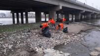 HAYVAN BARINAĞI - Aktepe Açıklaması 'Daha Temiz Bir Fatsa İçin Çalışıyoruz'