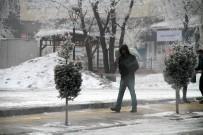 Ardahan'da Kırağı Tutan Ağaçlar Beyaza Büründü