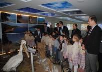 PAŞALı - Aydın'da Öğrenciler Yaban Hayatını Öğrendi