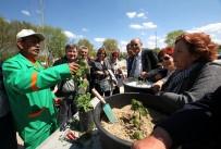 YILMAZ GÜNEY - Bahçıvanlık Kayıtları Başlıyor