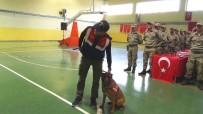 YEMİN TÖRENİ - Korucuların Yemin Töreninde Jandarma Köpeklerinin Gösterisi Büyük Beğeni Topladı