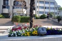 FEVZIPAŞA - Salihli'ye Bahar Geldi Her Yer Rengarenk Oldu