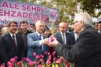 MUSTAFA ATAŞ - Şehzadeler'den Vatandaşlara 2 Bin Adet Lale Soğanı