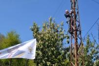 AK Parti'li Vekil Elektrik Direğine Tırmandı