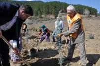 SAĞLIK MESLEK LİSESİ - Hayatını Orman Ve Ağaçlara Adayan 93 Yaşındaki Ömer Önder Açıklaması 'Fidanlar Benim Çocuklarım Gibi'