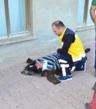 HALIL KAYA - Antalya'da Trafik Kazası Açıklaması 2 Yaralı
