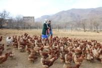 Atanamayan Eşine Destek Olmak İçin Tavuk Çiftliği Kurdu