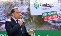 YILMAZ GÜNEY - Maltepe Ördekli Park'la Yeniden Canlandı
