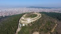 AYDOS ORMANI - Baharın Müjdeleyicisi İstanbulensis Çiçeği Açtı