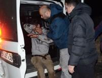 POLİS ARACI - Polis aracının kafayla camını kırdı