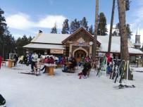 HABITAT - Sarıkamış Cıbıltepe Kayak Merkezi'nde Hafta Sonu Yoğunluğu