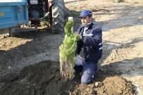Turgutlu'da Fidanlar Toprakla Buluştu