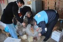 İL TARIM MÜDÜRLÜĞÜ - Zabıtanın Baskın Yaptığı Depodan 3 Ton Kaçak Çikolata Çıktı