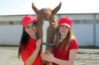 TÜRKIYE JOKEY KULÜBÜ - Elazığ'da 'Atlar Emin Ellerde'