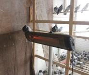 MANGO - Güvercinleri Elektrikli Isıtıcıyla Soğuktan Koruyor