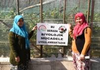 GIDA TARIM VE HAYVANCILIK BAKANLIĞI - Antalya'da 'Tarla Günü' Düzenlendi