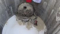 MEHMET CEYLAN - Ergene Havzası Temizleniyor