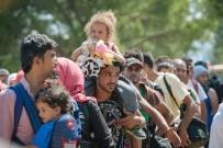 KAÇAK MÜLTECİ - Macaristan'dan mültecilere gözaltı kararı