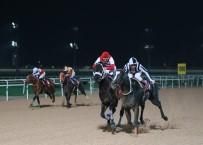 AHMET ÇELIK - Özgecan Aslan Koşusu'nu 'Mister Strong' Kazandı
