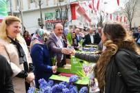 BAĞCıLAR BELEDIYESI - Bağcılar'da Kadınlara 25 Bin Adet Sümbül Dağıtıldı