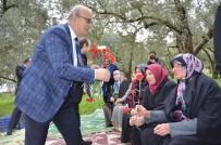 ALİ HAMZA PEHLİVAN - Başkandan Kadınlara Zeytin Tarlasında Çiçek