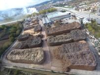 BATı KARADENIZ - Orman Ürünlerinden Milli Ekonomiye Büyük Katkı