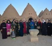 ŞİDDETE HAYIR - Ceylanpınarlı Kadınlar Türbeleri Gezdi