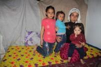Eşi Tarafından Terk Edilen 3 Çocuk Annesinin Yürek Yakan Dramı