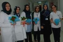 LOKMAN HEKIM - Lokman Hekim Van Hastanesinde 'Kadınlar Günü' Etkinliği