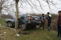 PİTBULL - Otomobil Ağaca Çarptı Açıklaması 1 Ölü, 1 Yaralı