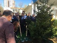 OKULLAR HAYAT OLSUN - Bakan Eroğlu Açıklaması Ataköy'de Fidan Dikim Törenine Katıldı