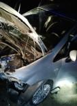 Elazığ'da Trafik Kazası Açıklaması 2 Ölü, 3 Yaralı