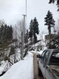 Bahar Geldi Derken Çiğdem Yaylasına Kar Yağdı