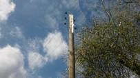 PATLAMA SESİ - Elektrik Direğine Yıldırım Düştü