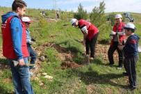 ÇEVRE TEMİZLİĞİ - Gönüllü Gençlerden Çevre Temizliği