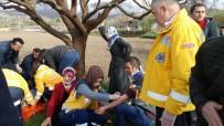 Öğretmenleri Taşıyan Minibüs Şarampole Devrildi Açıklaması 7 Yaralı