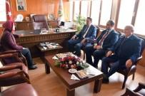 AK Parti Trabzon Milletvekili Ayşe Sula Köseoğlu,