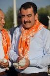 MEHMET ERDEM - Aydınlı Pamukçuya 209 Milyon Lira Destek Ödenecek
