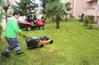 SONBAHAR - Başiskele'de Çim Biçme Çalışmaları Başladı