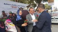 Biga'da 4 Bin Adet Çiçek Dağıtıldı