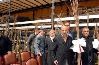 Bitlisli Çiftçilere 65 Bin Adet Meyve Fidanı Dağıtıldı