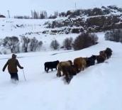 HAVA SICAKLIKLARI - Burası Erzurum !