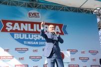 ŞANLIURFA VALİSİ - Cumhurbaşkanı Erdoğan'a Fahri Hemşehrilik Beratı Verildi