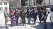 MANAVGAT IRMAĞI - Kıbrıs'tan Türkiye'ye Gelen 14 Mülteci Yakalandı