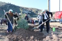 KABATAŞ ERKEK LISESI - Yozgat'ta 15 Temmuz Şehitleri Hatıra Ormanı'na Fidan Dikildi