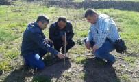 KARAAHMETLI - Yunusemre'de Organik Bağcılık Eğitimi