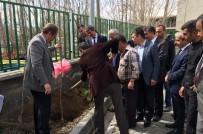 ARİF KARAMAN - Adilcevaz'da Çiftçilere 6 Bin 500 Fidan Dağıtıldı