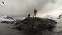 ANTARKTIKA - Antarktika'ya Giden Araştırmacılar Deneyimlerini Anlatacak